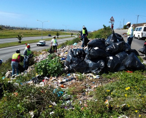 Clean Up Port Elizabeth